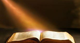 حكم وامثال و كلام من ذهب