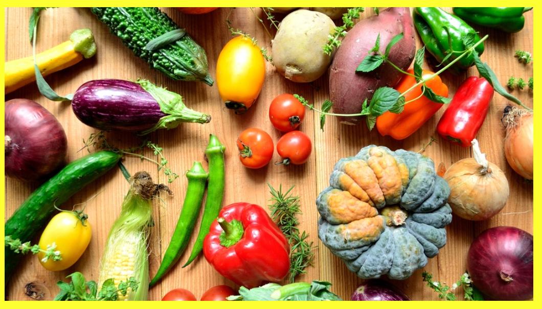 ماذا يزرع في الصيف ؟ أزيد من 18 محاصيل صيفية مربحة